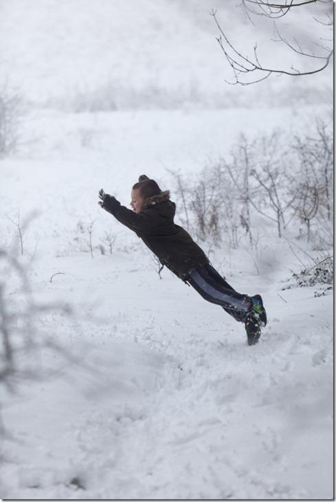 Snow1-1353