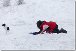 Snow1-1501